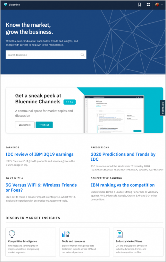 IBM BLUEMINE INTRANET from IBM